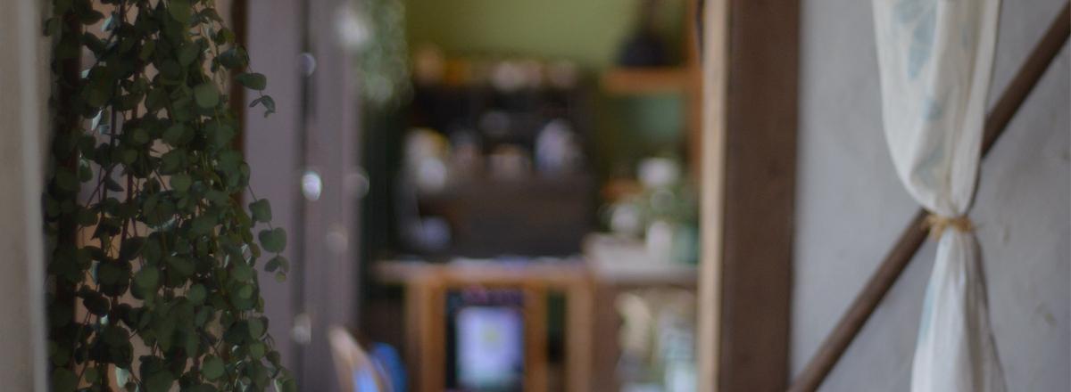 長野市にある漢方とハーブのお店なつめやブログ