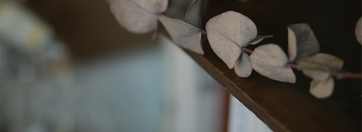 長野市にある漢方とハーブのお店なつめやのよくある質問